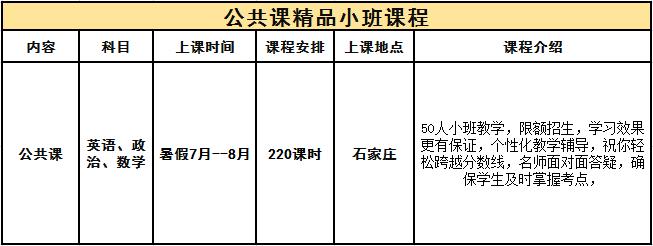 新公共课精品小班.png